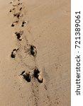 footprints in the sand | Shutterstock . vector #721389061