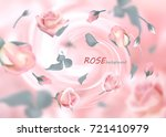 the buds of gently pink roses... | Shutterstock .eps vector #721410979