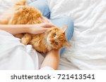 cute ginger cat lies on woman's ... | Shutterstock . vector #721413541