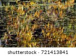 a still pond with abstract... | Shutterstock . vector #721413841