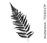 fern leaf silhouette. vector... | Shutterstock .eps vector #721421179