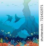 undersea marine life.... | Shutterstock .eps vector #721422571