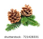 christmas pine cones with... | Shutterstock . vector #721428331