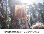 honey and sun | Shutterstock . vector #721440919