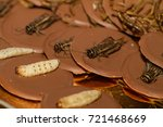 crickets  worms and larvas... | Shutterstock . vector #721468669