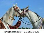 pair arabian horse. two mares...   Shutterstock . vector #721533421