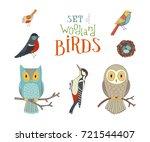 vector set of woodland birds in ... | Shutterstock .eps vector #721544407