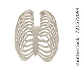 female ribcage skeleton on... | Shutterstock . vector #721572094
