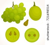 vector bunch of grapes on a... | Shutterstock .eps vector #721698514