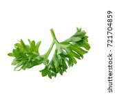 fresh branch of green parsley... | Shutterstock . vector #721704859