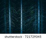 pine dark night creepy forest.... | Shutterstock . vector #721729345