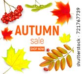 Sales Banner With Maple Autumn...
