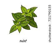 vector flat cartoon sketch... | Shutterstock .eps vector #721790155