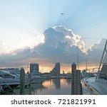 Miami Sunrise Bird Flying Abov...