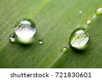 water drop in the grern leaf | Shutterstock . vector #721830601