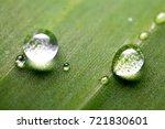 water drop in the grern leaf | Shutterstock . vector #721830601