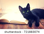 Stock photo open book and black cat on wooden table knowledge and education conceptual image 721883074