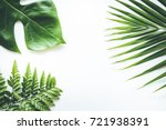 real tropical leaves set...   Shutterstock . vector #721938391