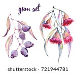 branches of gum with flowers... | Shutterstock . vector #721944781