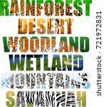 vector landscapes and animals... | Shutterstock .eps vector #721972831