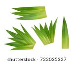 pineapple leaves isolated | Shutterstock . vector #722035327