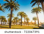 palm trees in a tropical resort ... | Shutterstock . vector #722067391