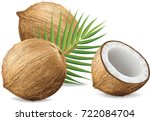 coconuts isolated on white... | Shutterstock .eps vector #722084704