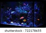 saltwater aquarium tank | Shutterstock . vector #722178655