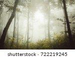 forest fog autumn background | Shutterstock . vector #722219245