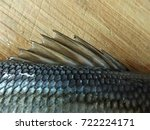 picture of the back fin of a... | Shutterstock . vector #722224171
