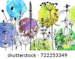 vector drawing wild plants ... | Shutterstock .eps vector #722253349