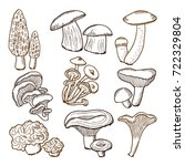 forest mushrooms in hand drawn... | Shutterstock .eps vector #722329804