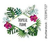 rhombus tropical frame ... | Shutterstock .eps vector #722391727