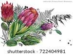 watercolor flower proteus... | Shutterstock . vector #722404981