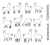 lama animal doodle line graphic ...   Shutterstock . vector #722405341
