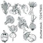 vegetables top view. organic... | Shutterstock .eps vector #722475601