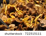 mushrooms recently picked... | Shutterstock . vector #722515111
