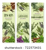 herbs and spices vector banners.... | Shutterstock .eps vector #722573431