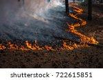 fire. wildfire  burning pine... | Shutterstock . vector #722615851