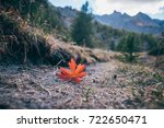 falling autumn leaf on the... | Shutterstock . vector #722650471