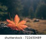 falling autumn leaf natural... | Shutterstock . vector #722650489