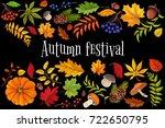 autumn festival   leaves frame  ... | Shutterstock .eps vector #722650795