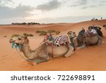 a herd of camels equipped with... | Shutterstock . vector #722698891