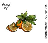 orange.vector illustration. the ... | Shutterstock .eps vector #722704645