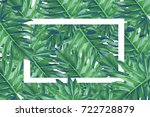 beautiful tropical leaves with  ... | Shutterstock . vector #722728879