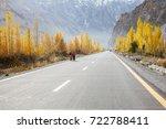 beautiful scenic road in autumn ... | Shutterstock . vector #722788411
