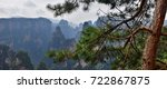 "Small photo of Zhangjiajie the ""Avatar"" mountain in Hunan province in China. Thousand and thousand rock soar to skyward. The evergreen pine trees struggle on the top of the hills."