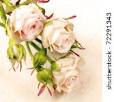 Rose With Buds Floral Card...