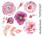 Stock photo hand painted floral elements set watercolor botanical illustration of ranunculus peony rose 722922187