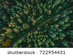 pine forest from above  fall... | Shutterstock . vector #722954431